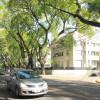 Una vista del eje Libertador, donde las tipas escoltan la intensa y atractiva avenida. Foto: La Nación