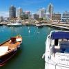 Punta del Este, lista para 2015